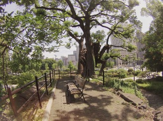 Tokyo: Park